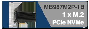 MB987M2P-1B